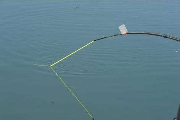 Bien choisir ses élastiques pour la pêche à la grande canne ! La Pêche au
